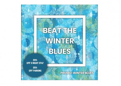Winter Blues Promo